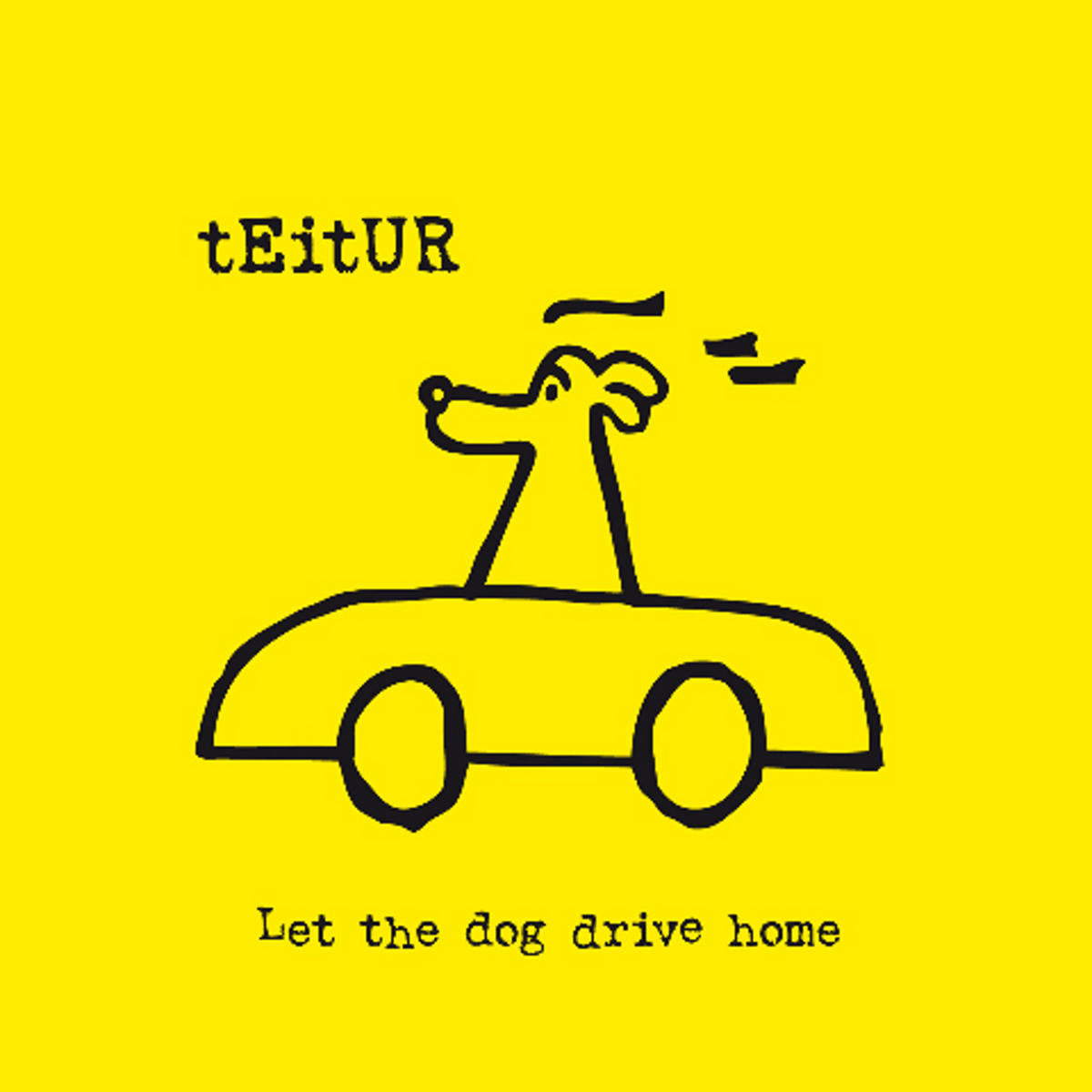 Teitur Let The Dog Drive Home