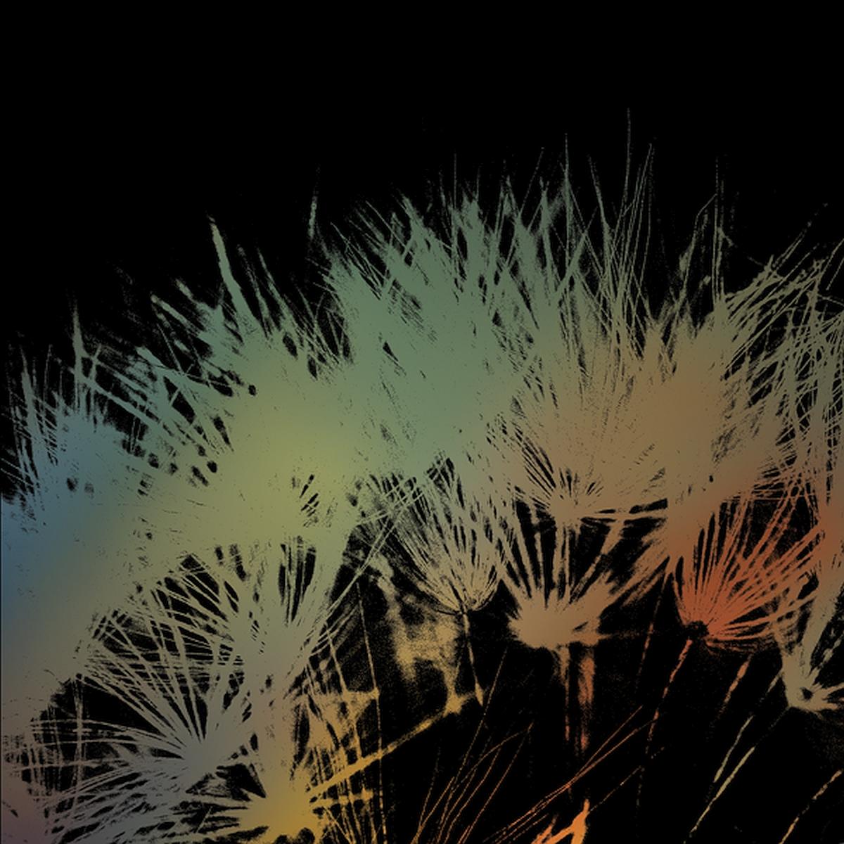 Andrew Paley's new album, Sirens,